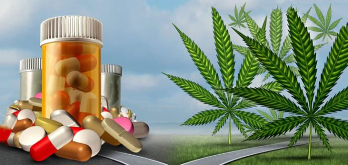 Why is CBD replacing Medications?